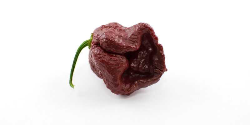 Douglah - los 10 pimientos mas picantes del mundo